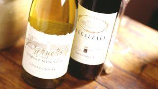 Vino tinto y blanco (Foto: istock)