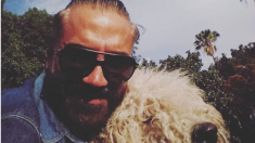 Instagram de Alejandro Fernández 1