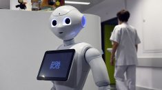 'Pepper', el robot de los hospitales de Lieja y Ostende (Bélgica). (AFP)