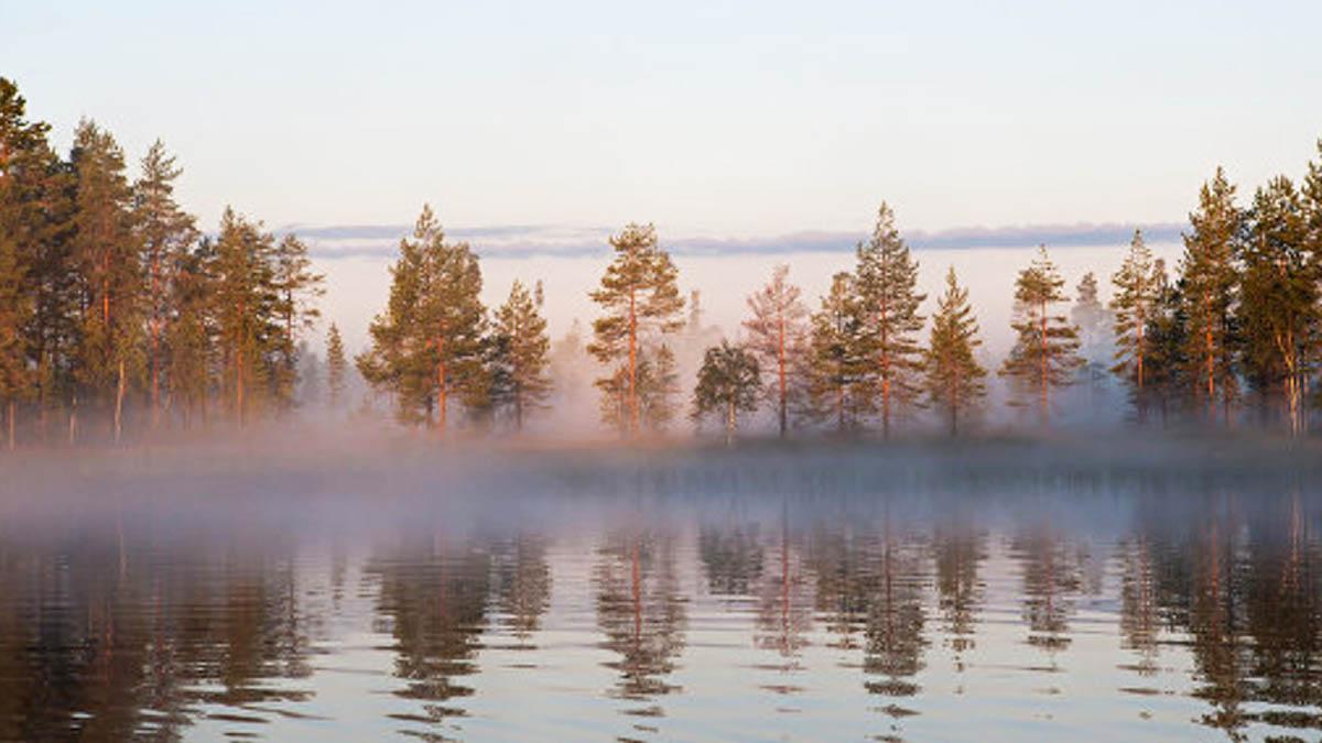 Lago Syamozero