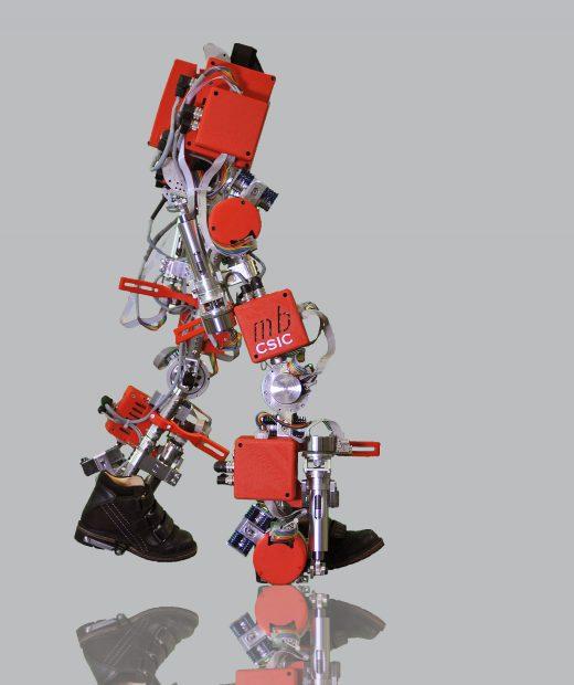 Exoesqueleto-CSIC
