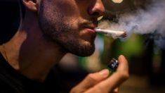 Cannabis (Foto: Getty)