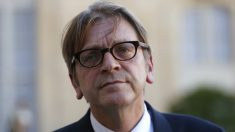 El líder de ALDE y ex primer ministro belga Guy Verhofstadt. (AFP)