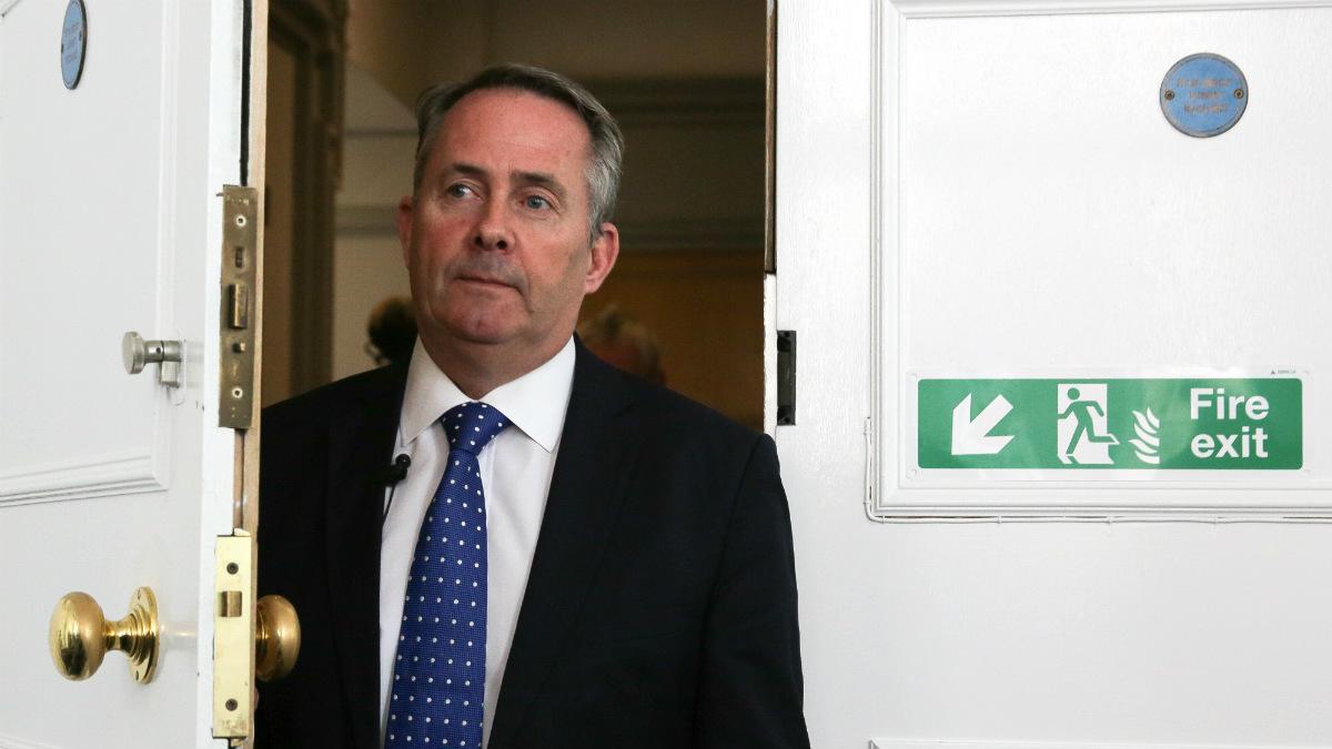 El ministro de Defensa británico, Liam Fox. (AFP)