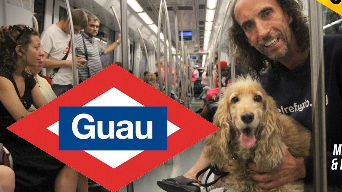 El presidente de El Refugio, Nacho Paunero, con el primer perro, que no haga labores de lazarillo, que ha paseado por el Metro de Madrid. (Foto: FB)