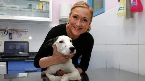 Cristina Cifuentes, Presidenta de la Comunidad de Madrid, se presenta como fiel amante de los animales y defensora de sus derechos. (Foto: Agencias)