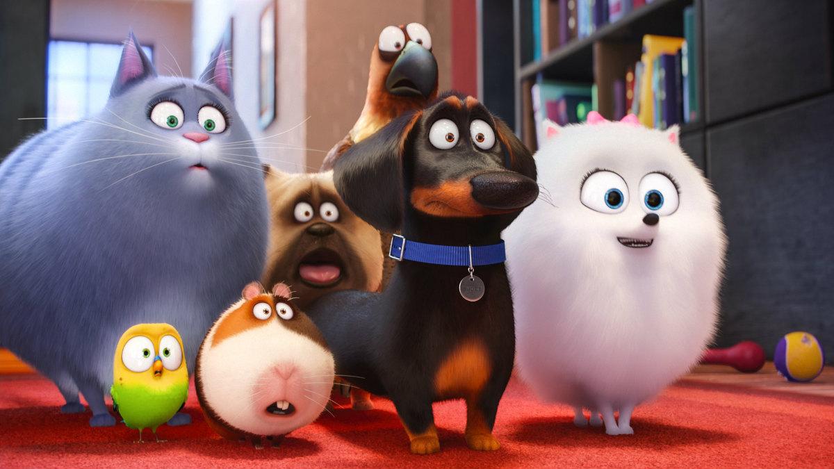 Los protagonistas de la película Mascotas son adorables animales de compañía que viven en el bullicio de la ciudad.