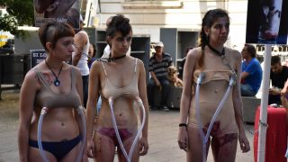 Tres de las activistas que protestaban contra el ordeño de las vacas. (Foto:PedroJSantoyo)