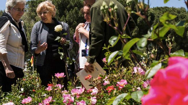 Carmena quiere cargarse las floristerías en Madrid: impide exponer las flores en la calle