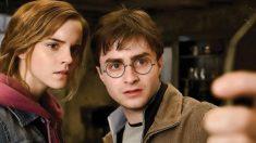 Los fans de Harry Potter piden una versión para el móvil, al estilo PokemonGo, donde poder luchar contra dementores o cazar criaturas mágicas. (Foto: WBros)