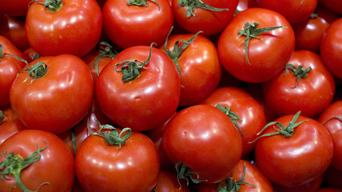 Tomates (Foto: Flickr)