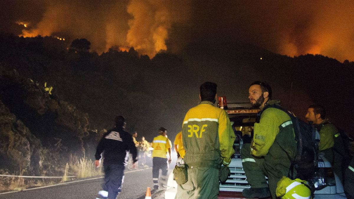 Operativos en el incendio de La Palma. (EFE)