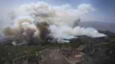 Fotografía aérea facilitada por el Gobierno de Canarias del incendio que se declaró ayer en la isla de La Palma y que afecta ya a entre 1.500 y 2.000 hectáreas de superficie. (Foto: EFE)