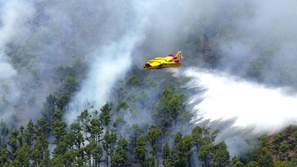 Imagen del incendio de La Palma (Foto: Efe).