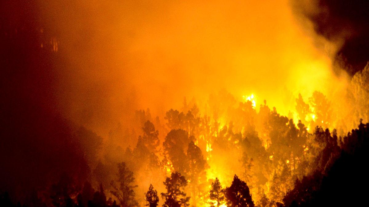 Imagen del  incendio que afecta a La Palma (Foto: Efe).