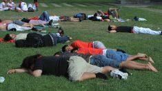 En España, la siesta es sagrada para muchos, tanto que no se la saltan ni estando fuera de casa. (Foto: GETTY)