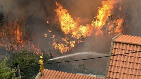 Un bombero trabaja en las labores de extinción del fuego que ya se ha cobrado tres vidas en Madeira. (Foto: AFP)