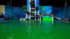 El agua de la piscina de saltos, de color verde. (Getty)