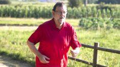 Rajoy durante su paseo por una ruta senderista de Pontevedra (Foto: Efe).