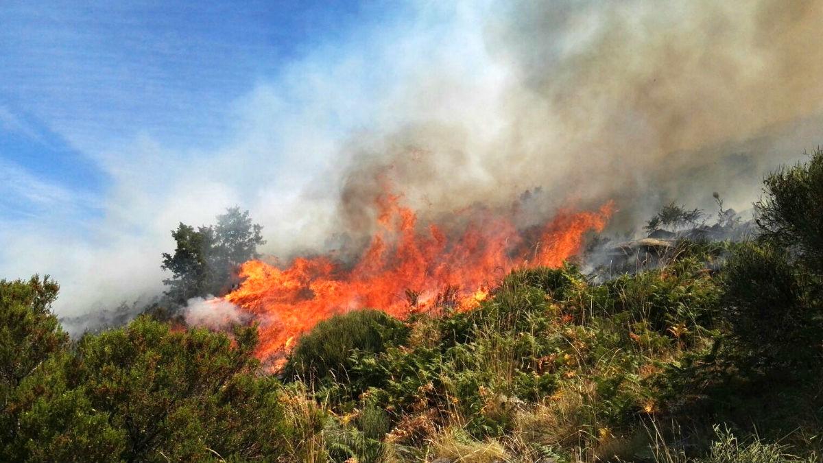 Imagen del incendio en el Valle del Jerte (Foto: Efe).
