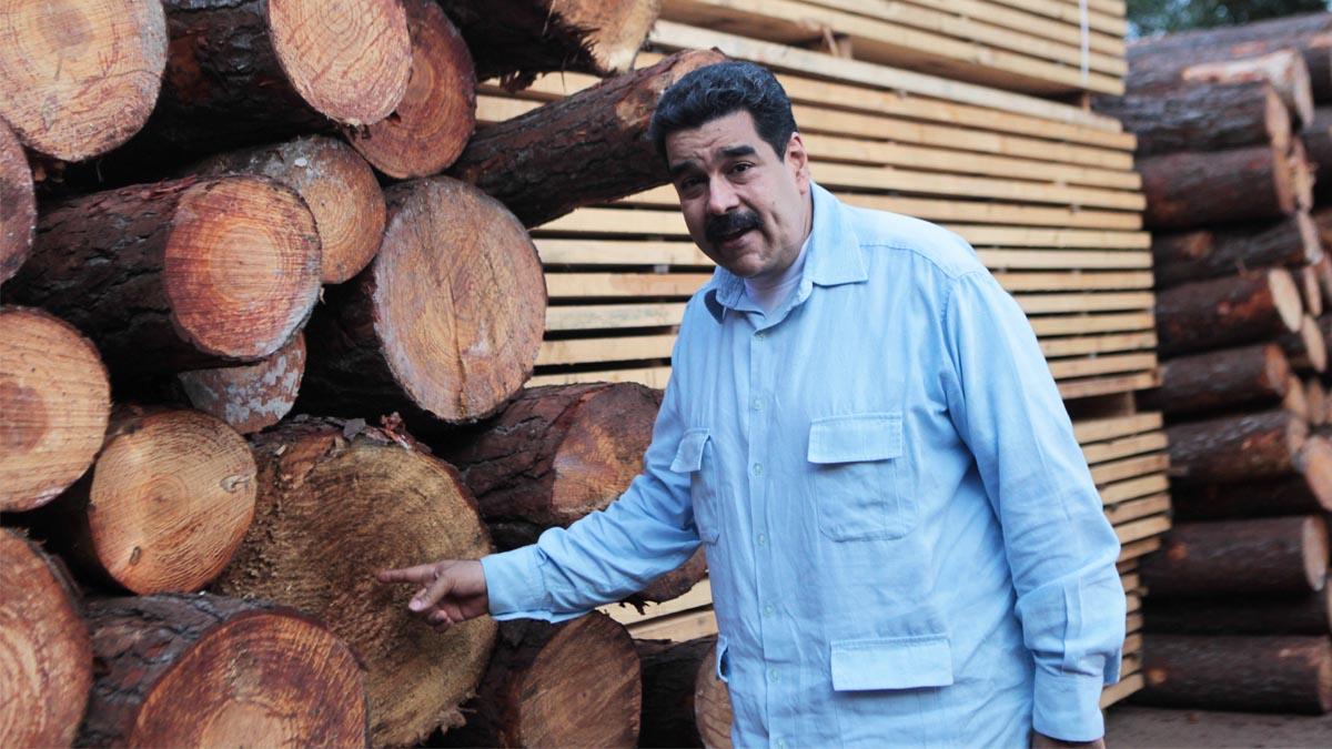 Nicolás Maduro junto a unos troncos (Foto: Reuters)