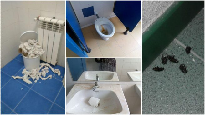 Así de apestosos tiene Carmena los baños de los colegios públicos de Madrid tras el verano