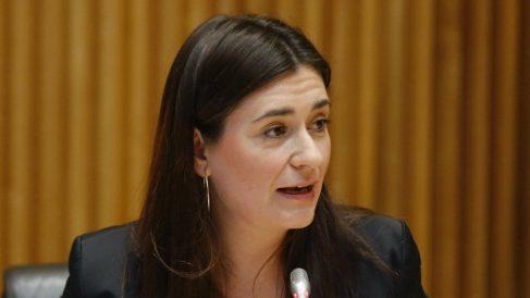 La secretaria de Igualdad, Carmen Montón. (Foto:EFE)
