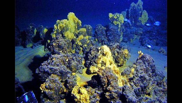 Universidad de Tokyo en colaboración con investigadores de la NASA apuntan que el origen del SARS-CoV-2 podría ser las profundiades del Océano Índico
