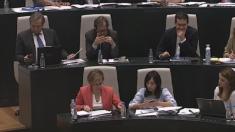 El grupo municipal socialista en el Pleno. (Foto: YT)