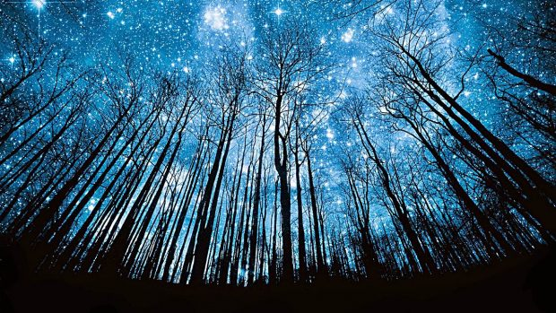 estrellas como formaron