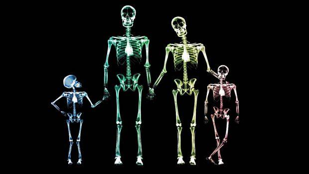 cantidad de huesos hombre y mujer