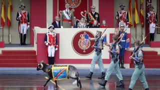 La cabra de la Legión pasa ante la tribuna presidencial. (Foto: AFP)