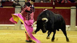 Cayetano Rivera brinda un toro a Adrián en la Feria del Pilar 2016