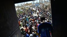 Miles de afectados en Haití luchan por conseguir parte de la ayuda humanitaria que cada día llega a Haití, los medicamentes contraa el cólera escasean. Foto: AFP