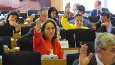 La eurodiputada de Ciudadanos Carolina Punset. (Foto: Twitter)