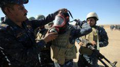 Soldados iraquíes se preparan para la oensiva que pretende liberar Mosul del ISIS. AFP