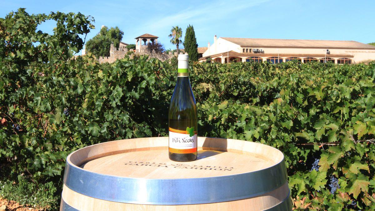 Pata Negra Chardonnay Penedès fermentado en Barrica.