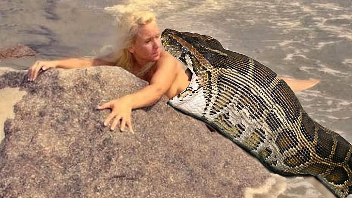serpientes mas grandes del-mundo-r