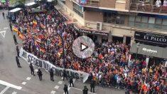 Mestalla recibió a Alcácer con insultos. (@RatoliVolaor)