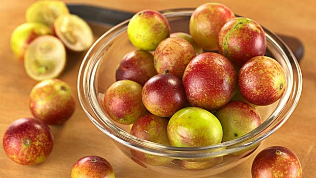 camu camu fruto beneficios