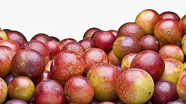 camu camu fruto beneficios zumo propiedades