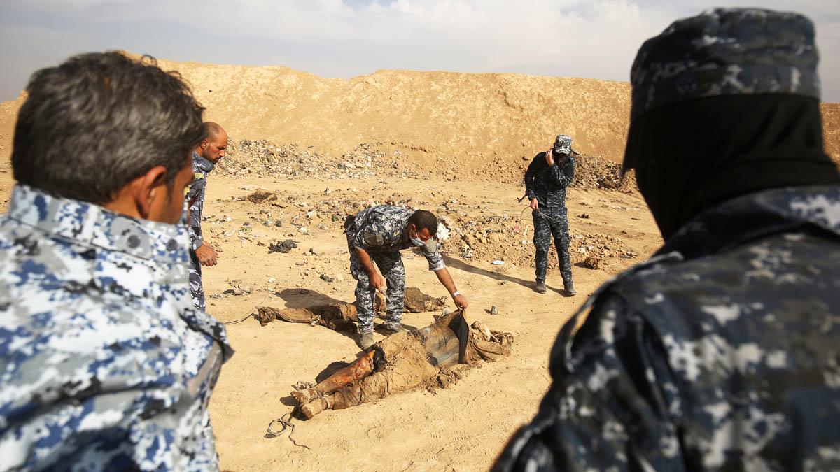 Soldados de la alianza encuentran cuerpos muertos en Mosul (Foto: AFP)