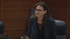 La diputada de Podemos en la Asamblea de Madrid, Beatriz Galiana. (Foto: Asamblea)