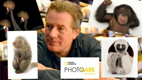 Joel Sartore con algunas de las fotos que ha realizado dentro del proyecto 'PhotoArk' para National Geographic. Foto: GETTYIMAGES y NATIONAL GEOGRAPHIC
