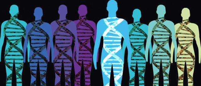 Los cinco descubrimientos científicos actuales más importantes - Genoma humano