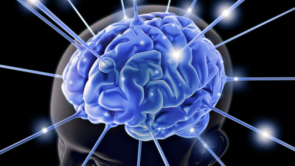 Anota estas curiosidades del cerebro que te harán pensar
