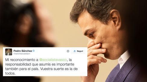 El Twitter del ex secretario general del PSOE, Pedro Sánchez (Foto: AFP)