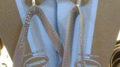 ¿De qué color son estas chanclas? ¿Azul y negro o dorado y blanco?