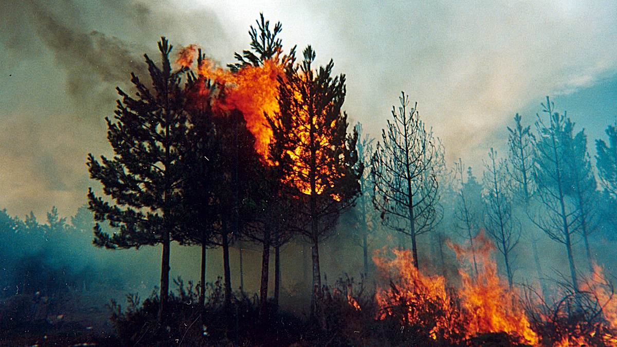 desastres naturales tipos