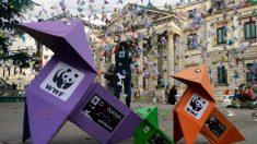 Los pájaros de papel se han instalado frente al Congreso de los Diputados en Madrid. Foto: WWF
